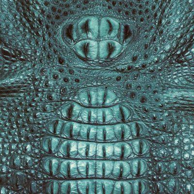 Da cá sấu được thuộc màu
